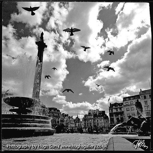 TS6-Trafalgar Square (B/W)