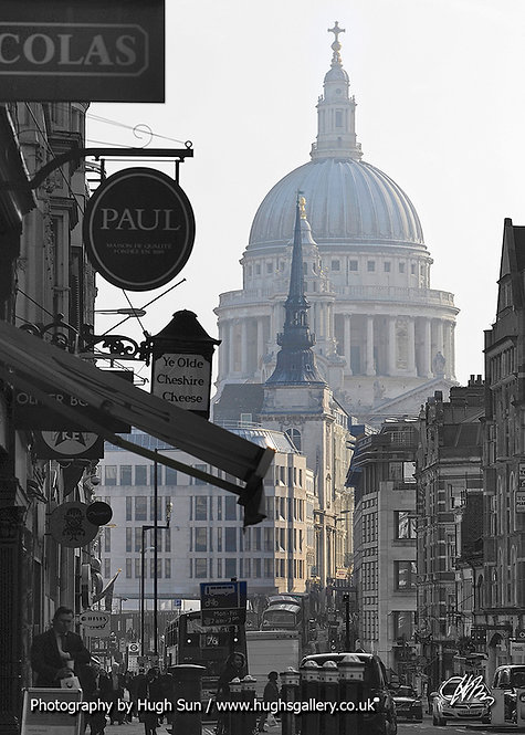 SP7-St Paul's Cathedral (B/W)