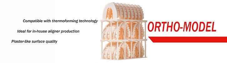 Ortho-Model.jpg