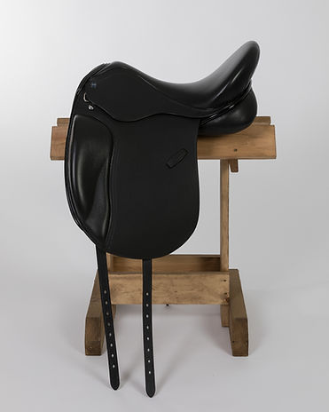 AMZ Saddles February 2019-1.jpg