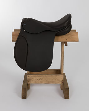 AMZ Saddles February 2019-14.jpg
