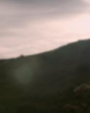 Screenshot 2020-06-16 at 14.01.36.png