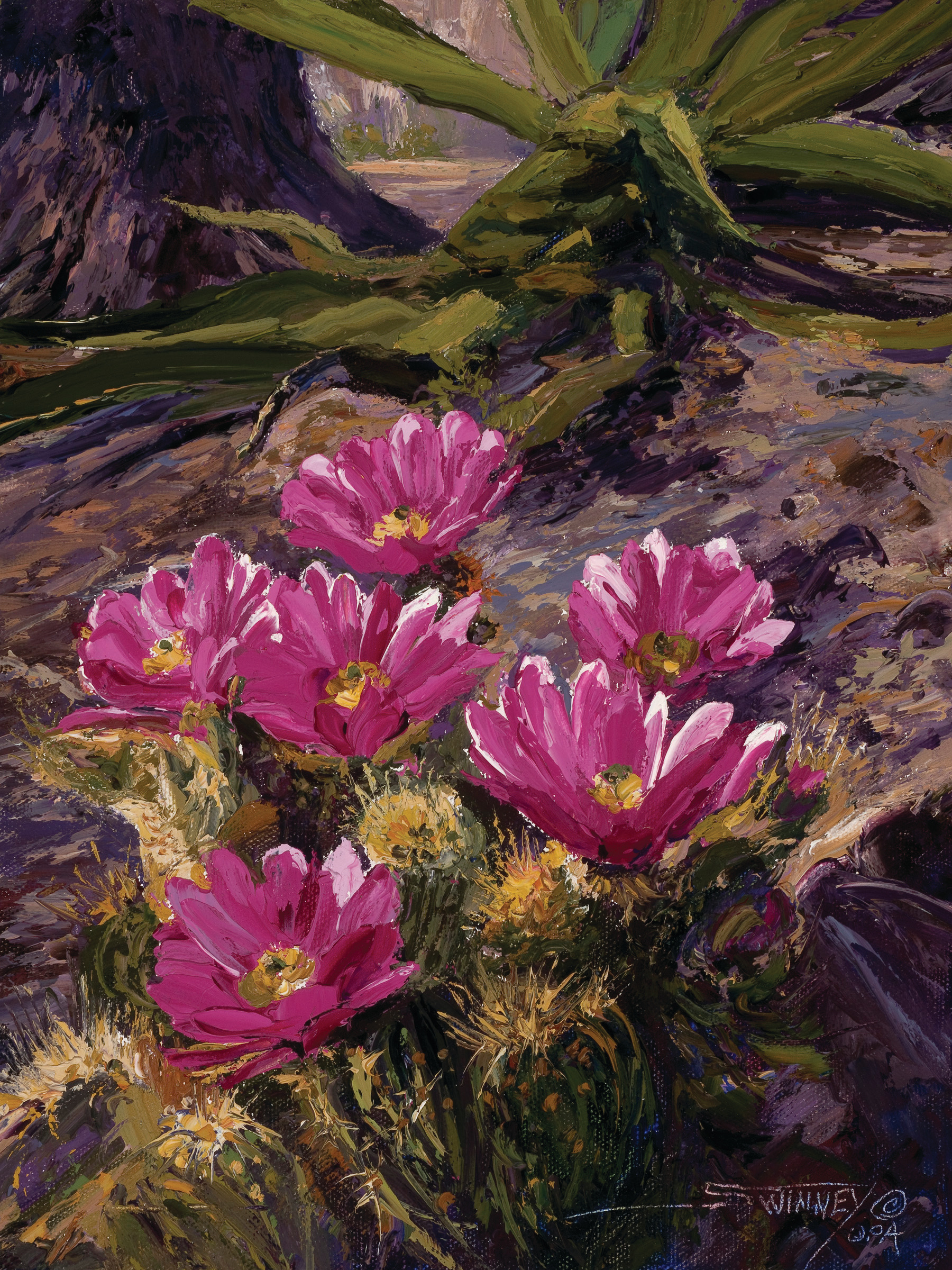 """Blooms of the desert"" by C. Swinney"