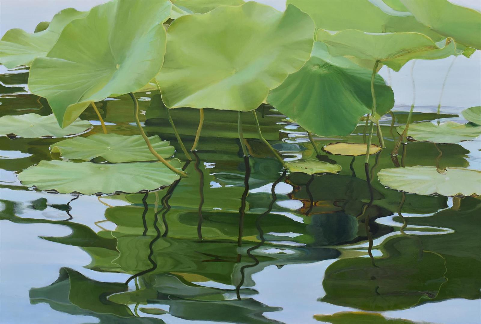 Farabaugh - Sheri - Lotus Leaves and Lil