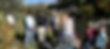 Screen Shot 2020-07-29 at 9.40.18 PM.png