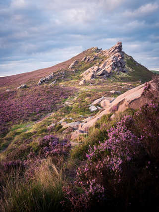 Ramshaw Rocks Heather