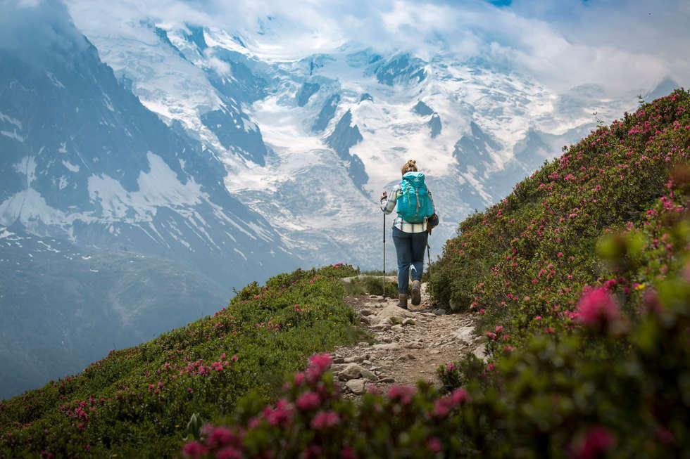 Alpine Wandering