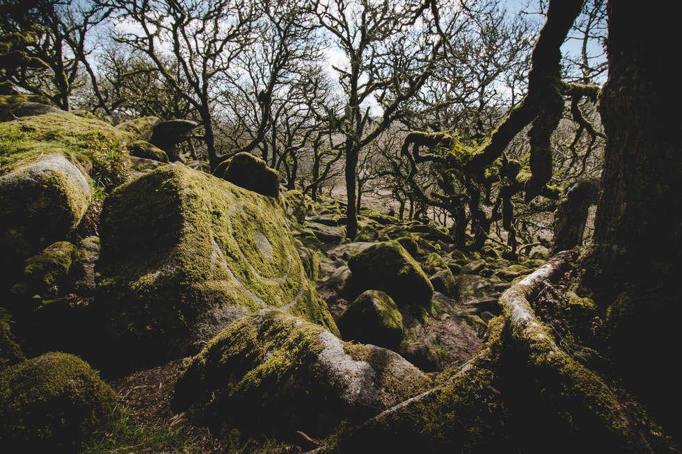 Dartmoor-010.jpg