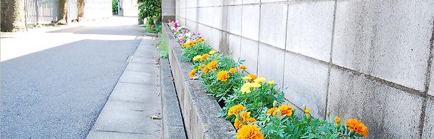 アパート前の花壇
