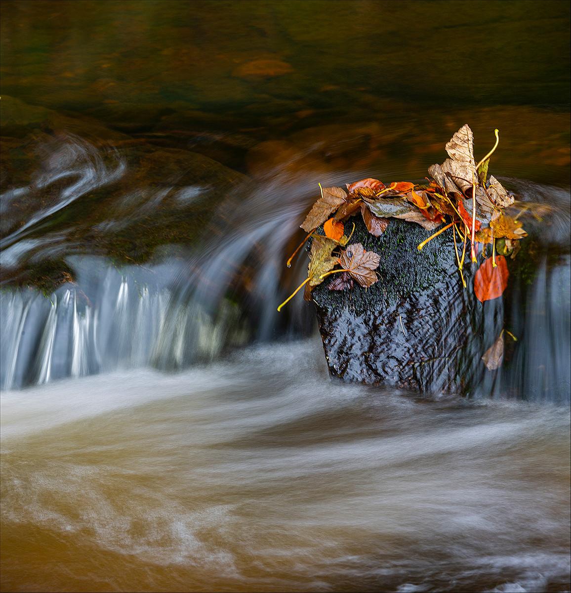 'Autumn Flow' by Donal Collins (12 marks)  -  Westcourt Camera Club