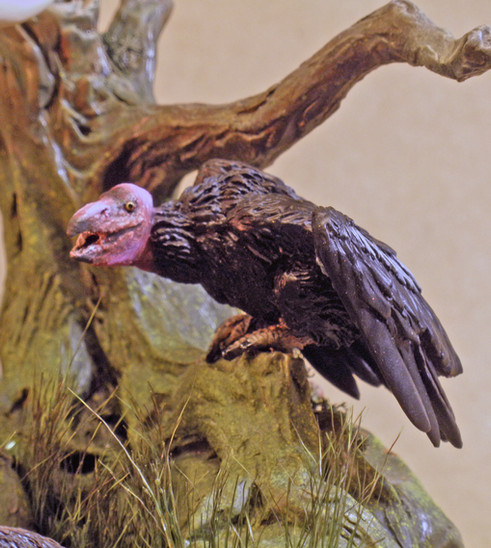 La Brea Tar Pit, Vulture