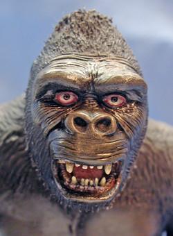 King Kong_Close Up