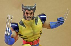 PL Wolverine, Unmasked