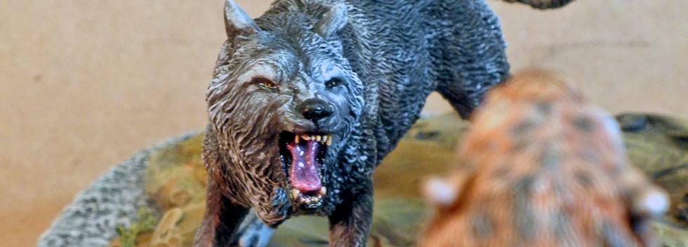 La Brea Tar Pit, Dire Wolf