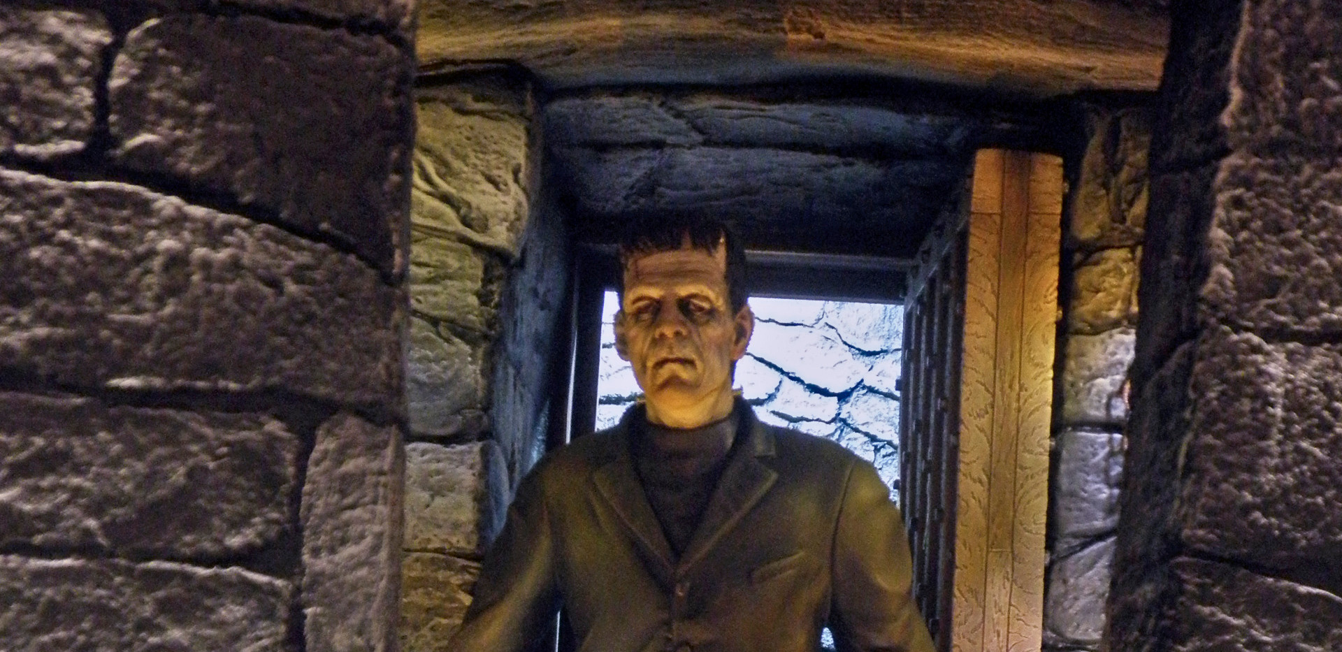 Moebius Frankenstein, Close Up
