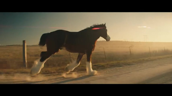 Budweiser _ Beer Country _  60.mp4