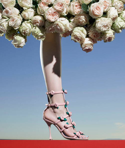 Glamour Fashion Shoes Flowers