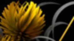 3D model, cinema 4d, Motion graphics, artist, London, Angela Gigica  punanimation, intro, 3d illustration, yellow flowers