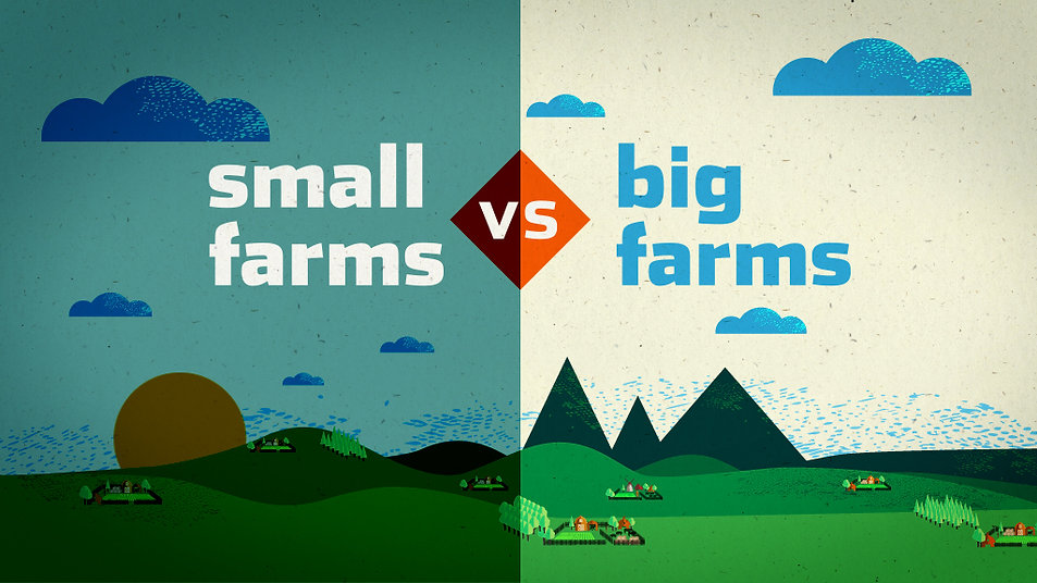 Style frame SAB Miller, small farms vs big farms, motion designer