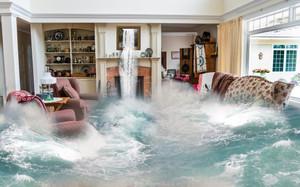 Flood News: NFIP Policy Cancellation