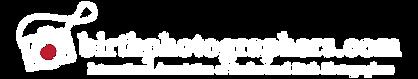 birthphotographers-logo-white-copy.png