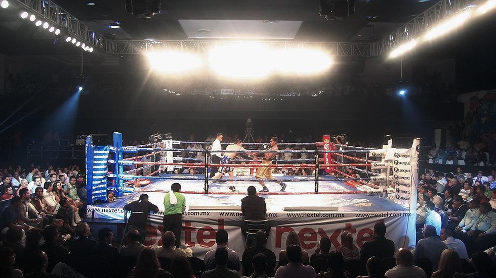 FCL Fight Club Ljubljana