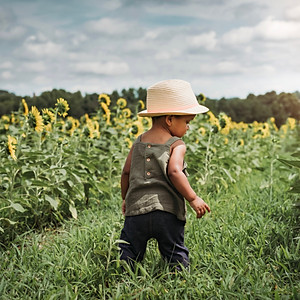 Ellie's Sunflowers
