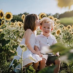 Jess Johnson Sunflowers