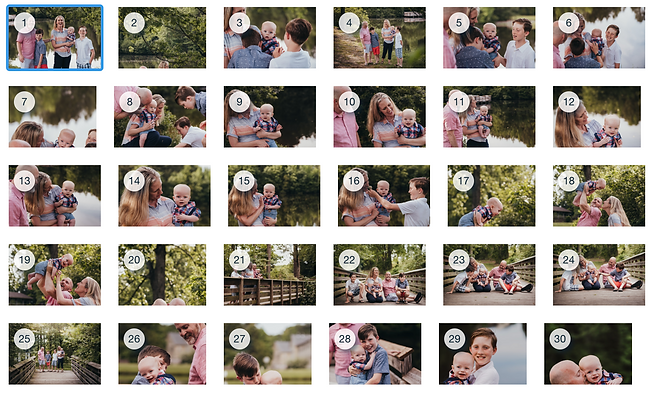 Family Session photography in Apex