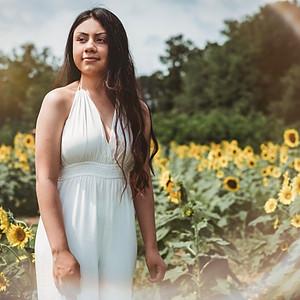 Rebeca's Sunflower
