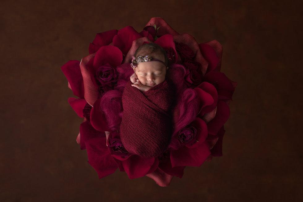 Werribee baby Photographer.jpg