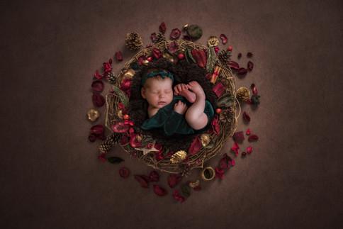 Williams_Landing_Newborn_Photographer-.j