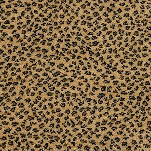 Errico Carpet