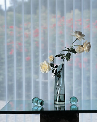 Luminette Vertical Blinds