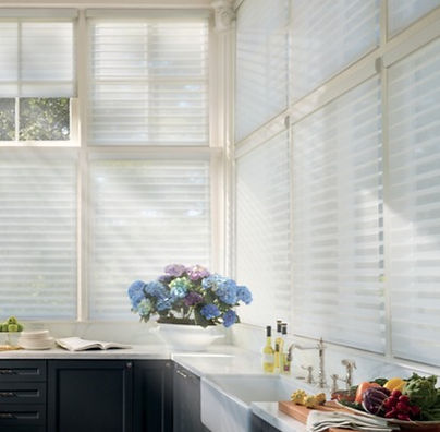 Hunter Douglas Silhouette Blind