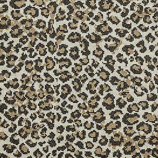 Everette Carpet