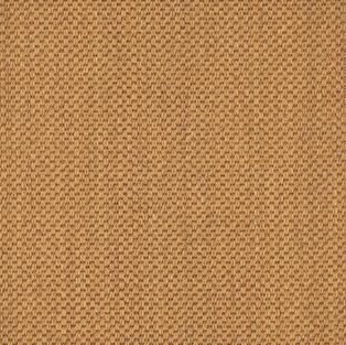 Beach Grass Carpet