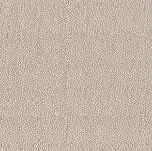 Hammonds Carpet