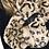 Thumbnail: Malissa J - Faux fur bling detail  collar