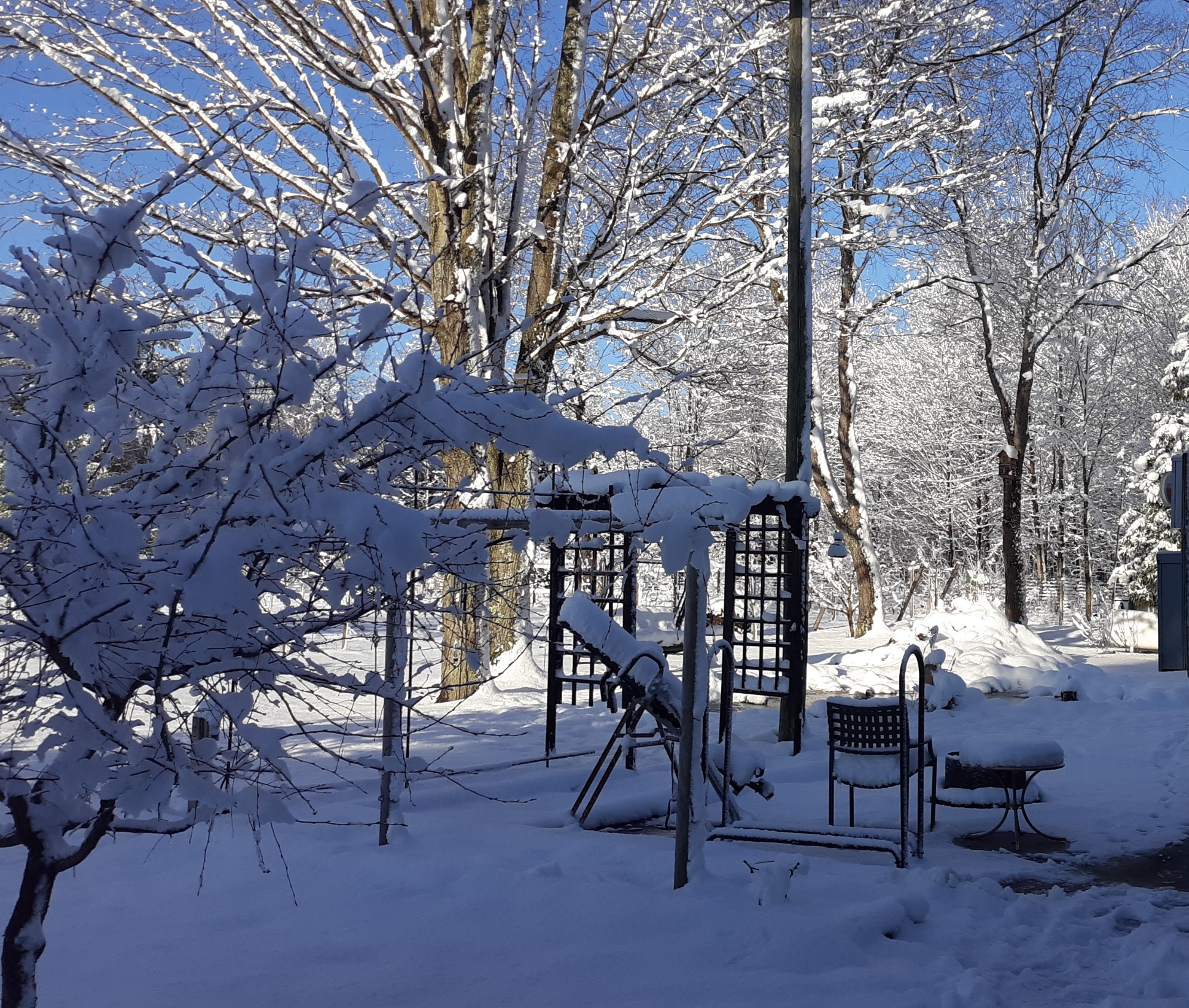 Winter at LLForge