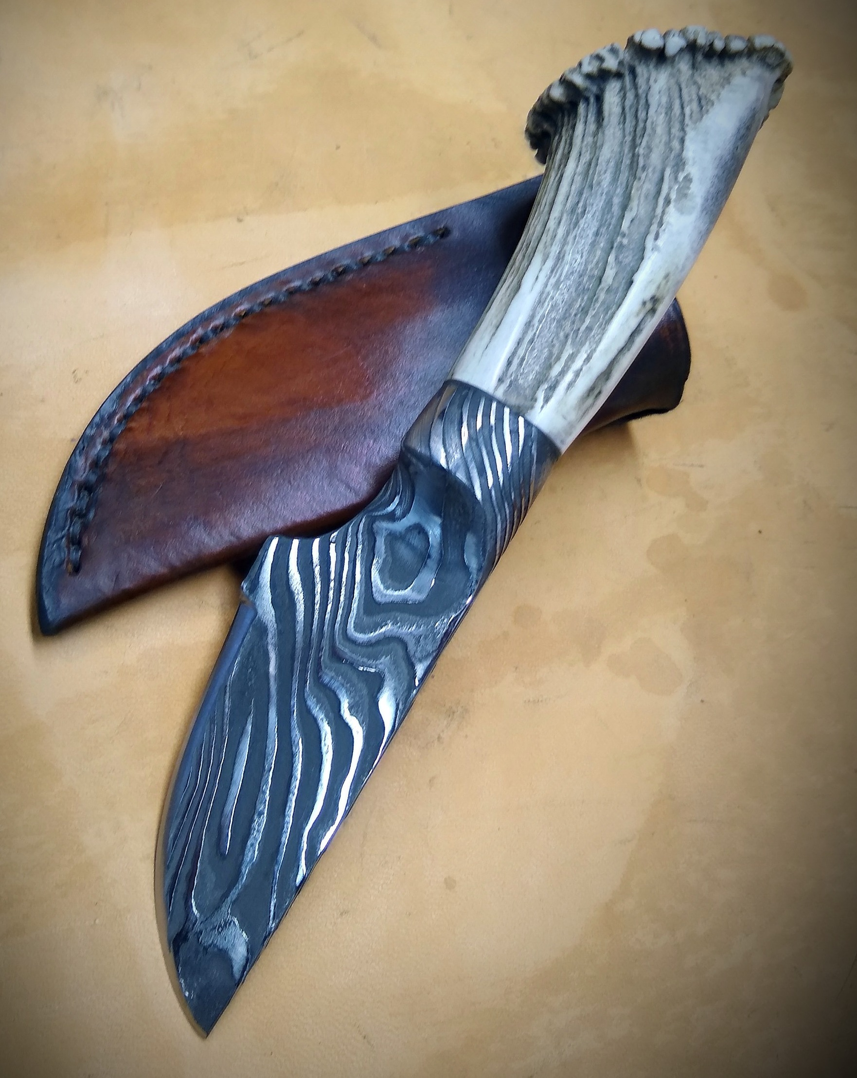 Damascus Skinner with Elk Horn