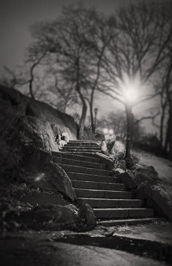 Central Stairs |  Manhattan NY