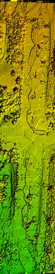 Digital Surface Maps