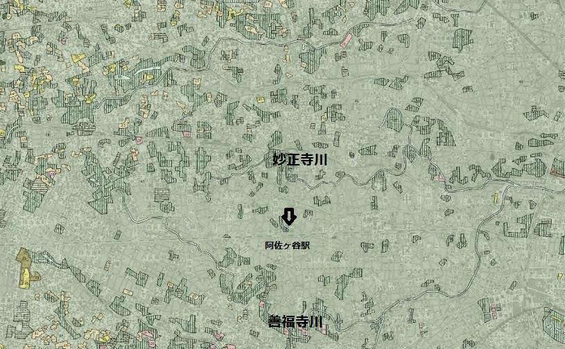 植生調査 東京都西北部