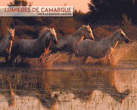 Lumières de Camargue de J.F. Galeron