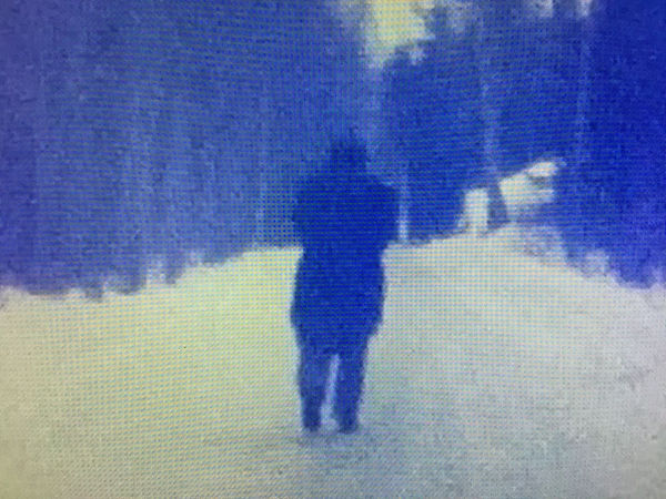 Blue and white blurry image of a figure standing on a road.