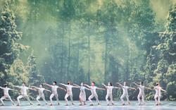 Misc. Ballet