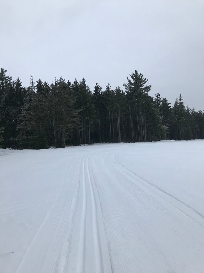 20 KM GROOMED FRESH THIS AM