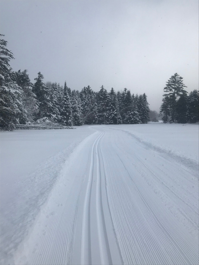 """Another 3""""-4"""" of fresh and a lot more trails open"""
