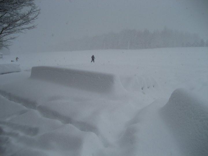 yesterdays wonderful snow storm